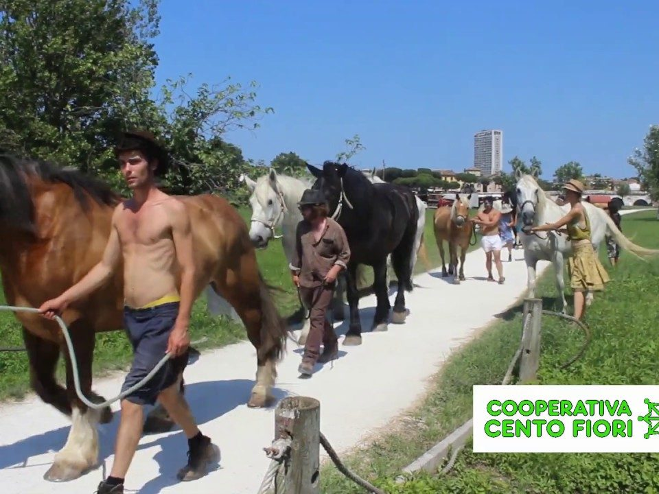 Vivaio La Serra Cento Fiori Rimini ospita cavalli Cirque Bidon