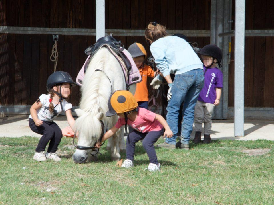 Bambini che praticano i corsi di equitazione etologica alla Scuderia Cento Fiori