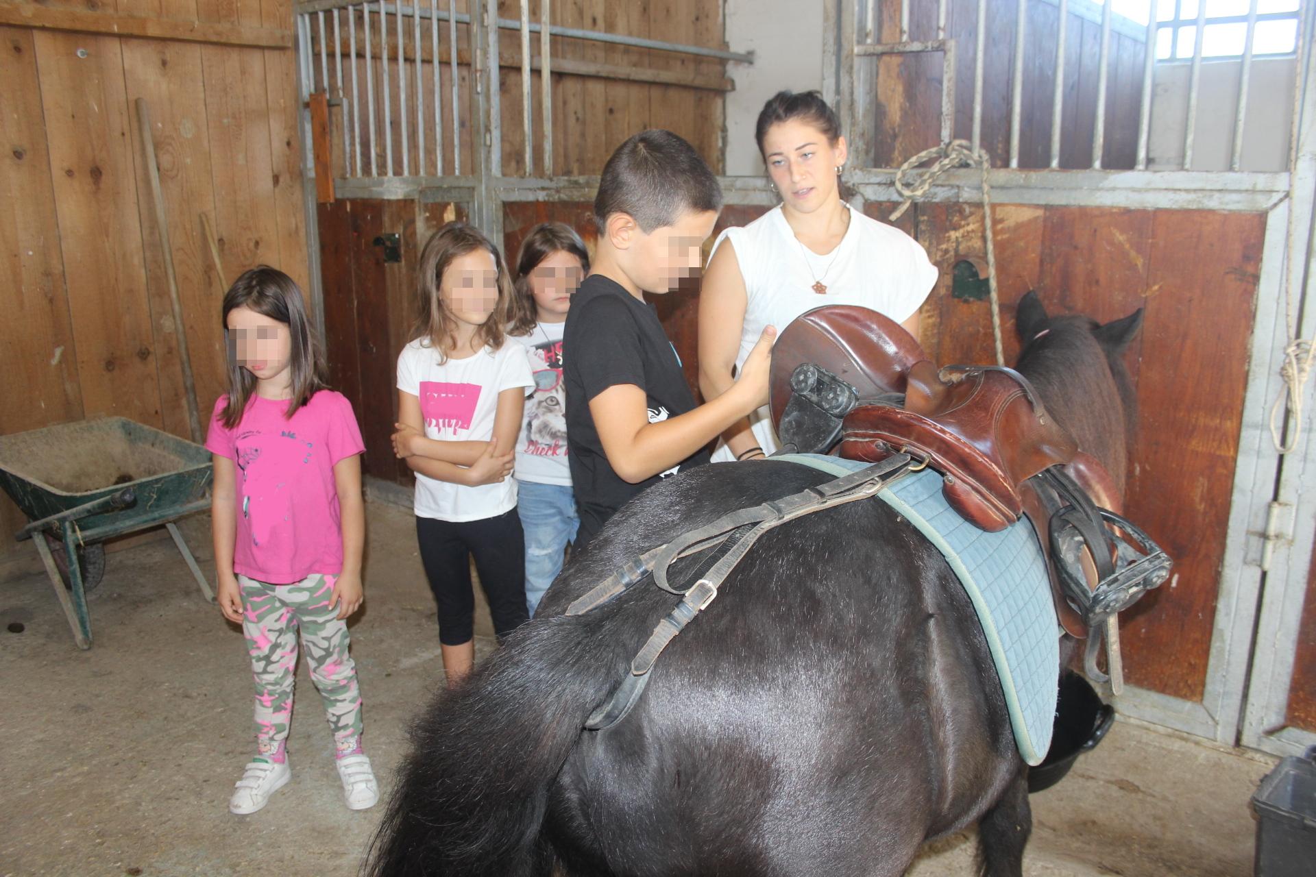 Bambini e un pony nella Scuderia Cento Fiori a Vallecchio di Montescudo, Rimini
