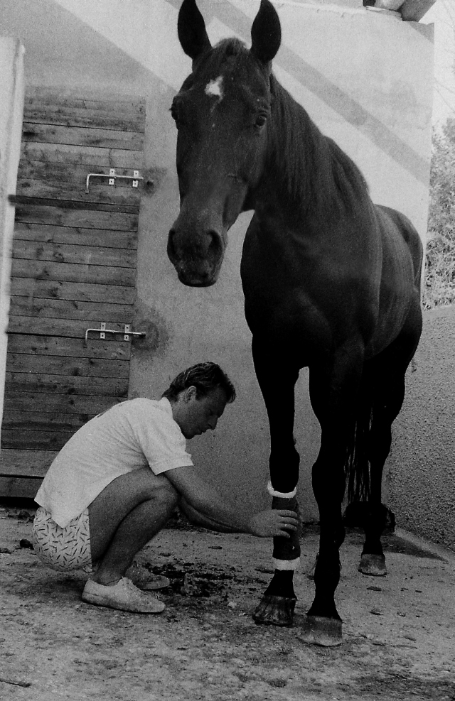 Artiere accudisce un cavallo alla scuderia Cento Fiori di Vallecchio negli anni '80