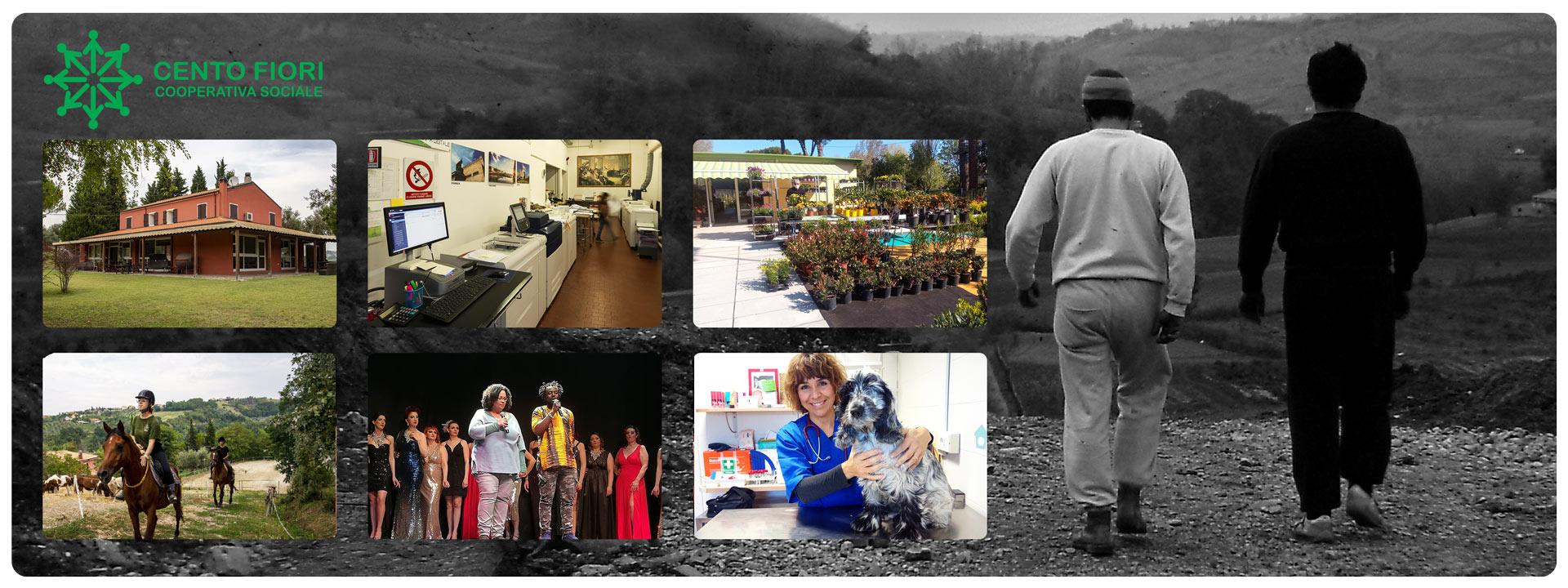 Composizione di immagini Immagini delle attività della Cooperativa Sociale Cento Fiori di Rimini.