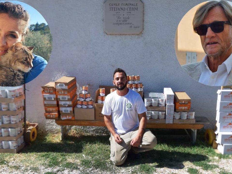 Il cibo per gatti donato da Le Befane Shopping Center e nei riquadri Paola Calcagnini e Massimo Bobbo.